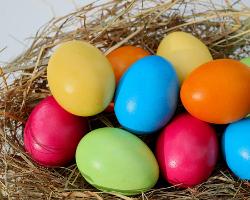 Von Ostern und Hasen im Miet- und Wohnungseigentumsrecht